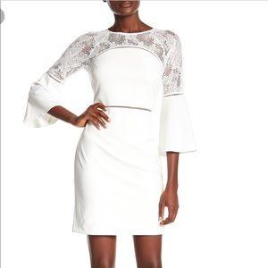 NWT [Kensie] Ivory Lace Peek-Through Dress (2)